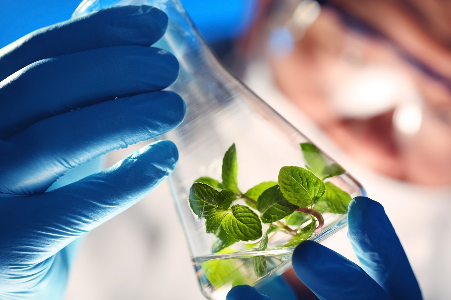 Conferences on Green Chemistry and White Biotechnologies